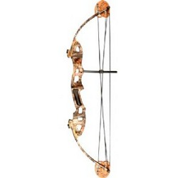 Alpine Archery Micro Stalker Compound Bow Review