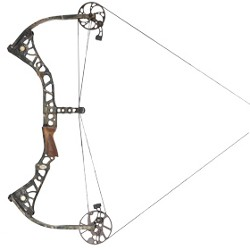 Mathews DXT Compound Bow Review